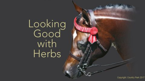 Looking Good with Herbs