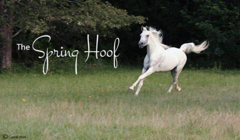 The Spring Hoof